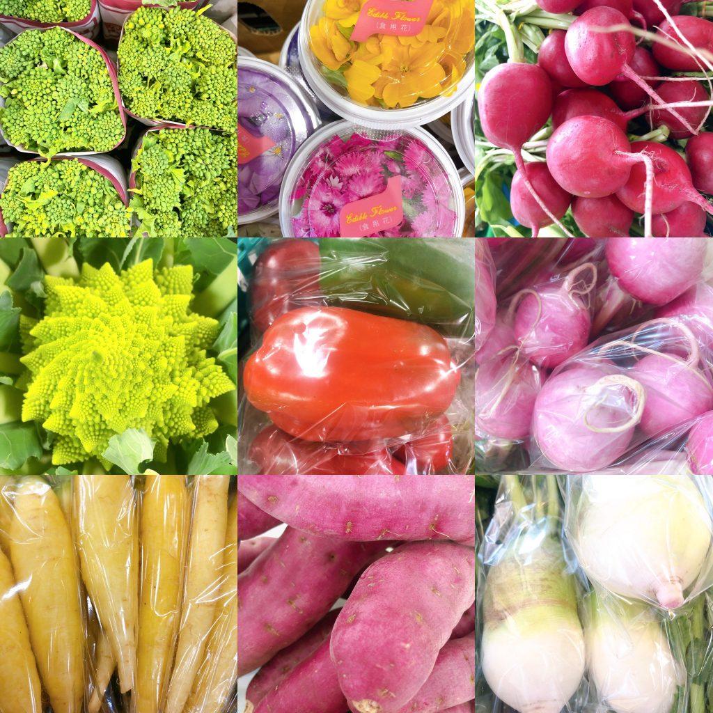 1月のお野菜